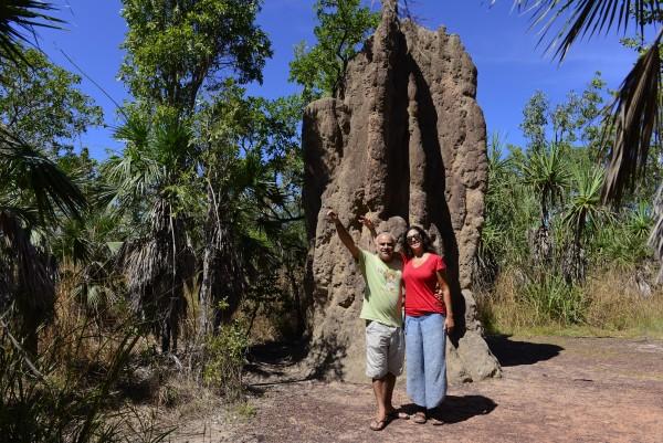 Los grandes termiteros de los territorios del norte de Australia