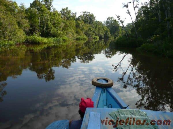 El Parque Nacional de Tanjung Puting