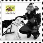 Viajar a Laponia por tu cuenta