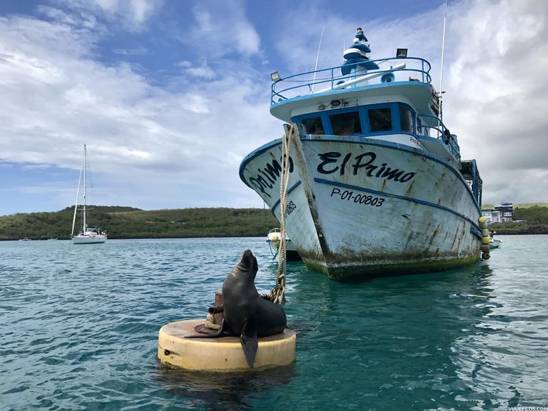 En el puerto de la ciudad de Puerto Baquerizo de Galápagos en la isla de San Cristóbal