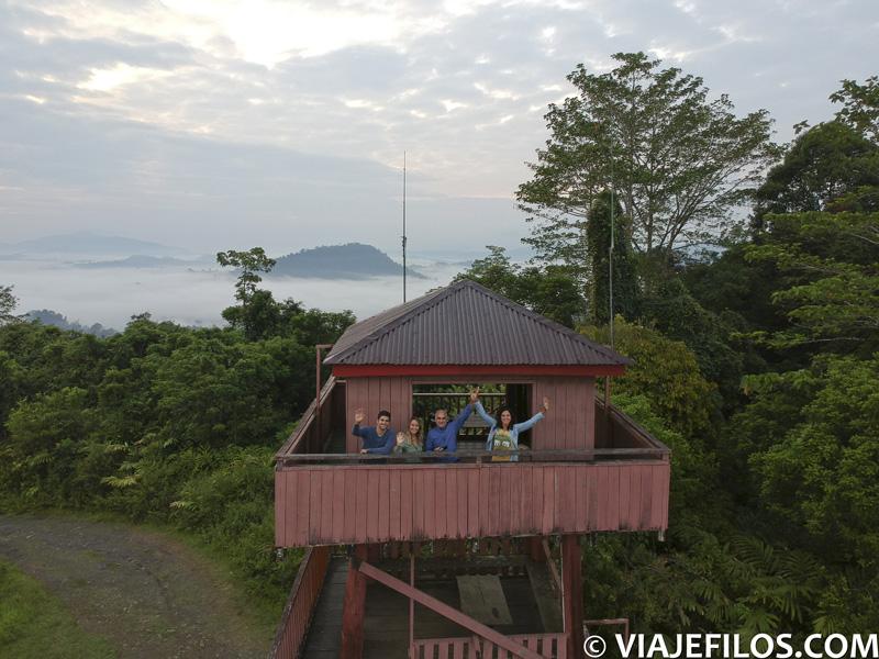 Torre de observación del Danum Valley