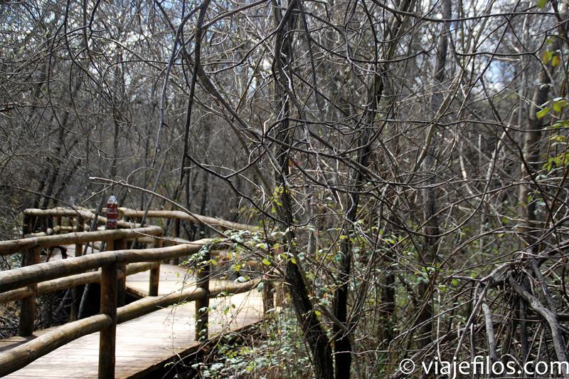 Alrededores del Centro de visitantes del parque nacional de Cabañeros