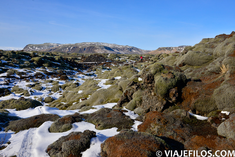 Camino de Jokursarlon en una semana de viaje por Islandia