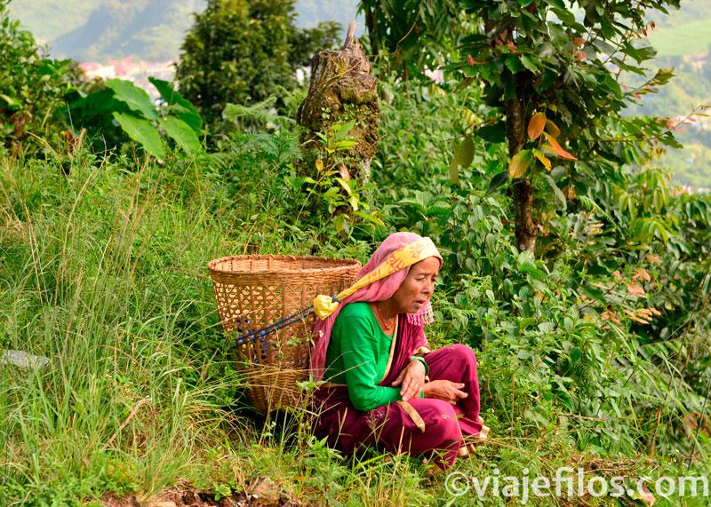 Mujer nepalí