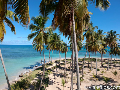 Lo mejor de Republica Dominicana: Playa Bonita