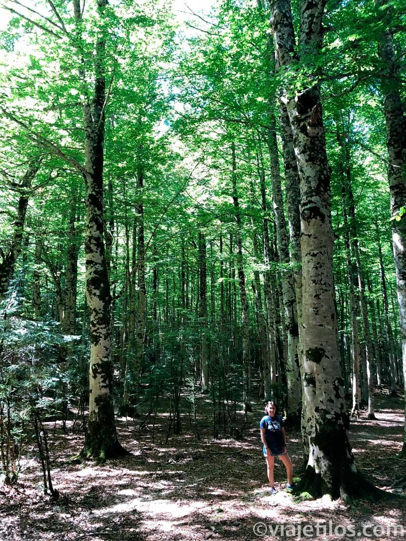 Pradera de Ordesa, fundamental en cuatro días de escapada al Pirineo aragonés
