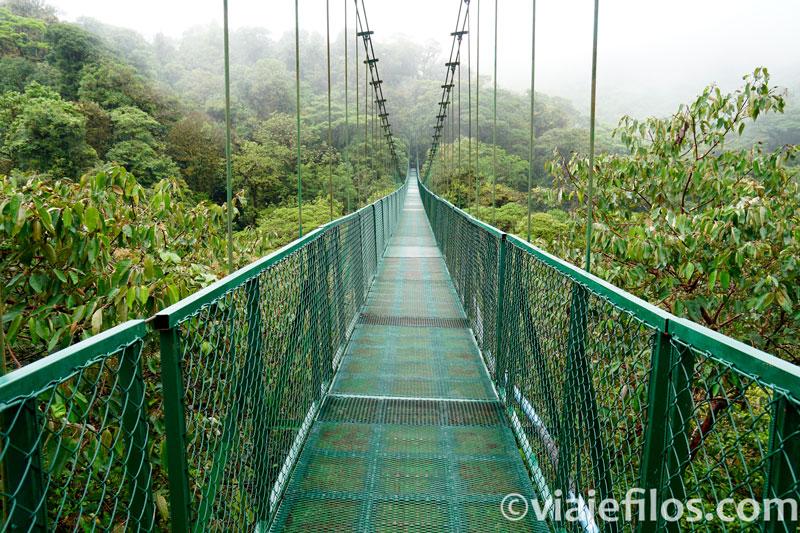 Puentes colgantes de Monteverde en Costa Rica