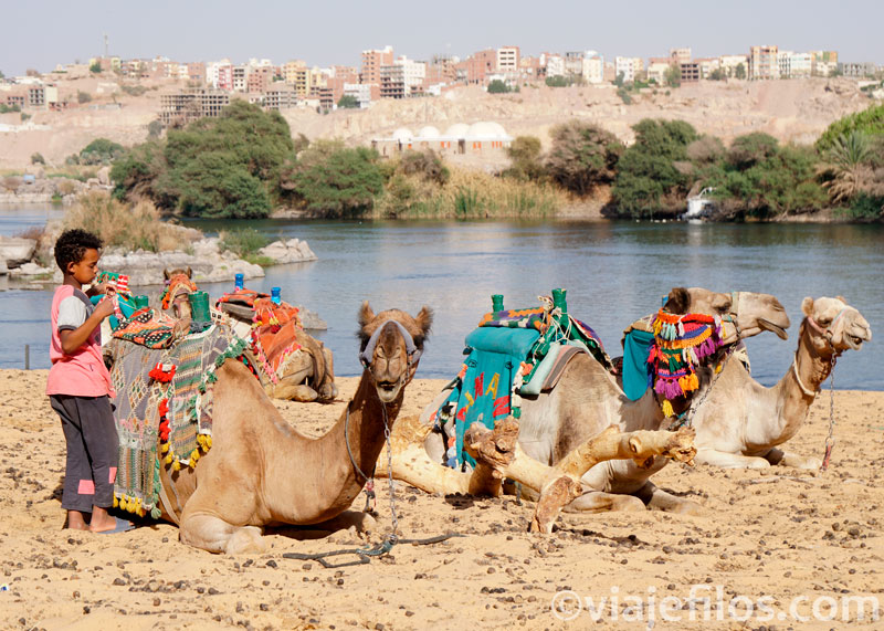 El paseo en faluca por el Nilo