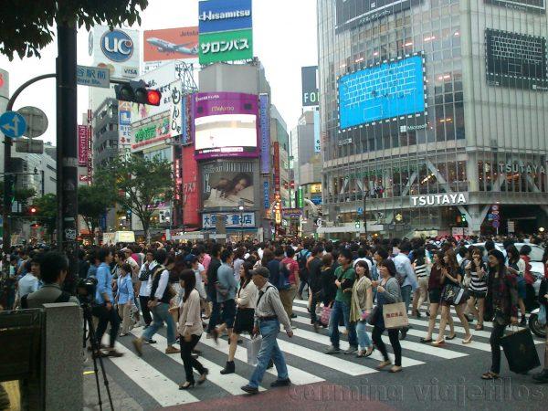 Los pasos de cebra en Japón