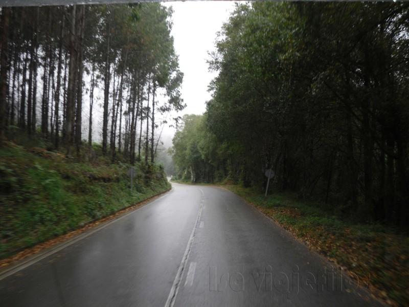 Isa Camino de Santiago