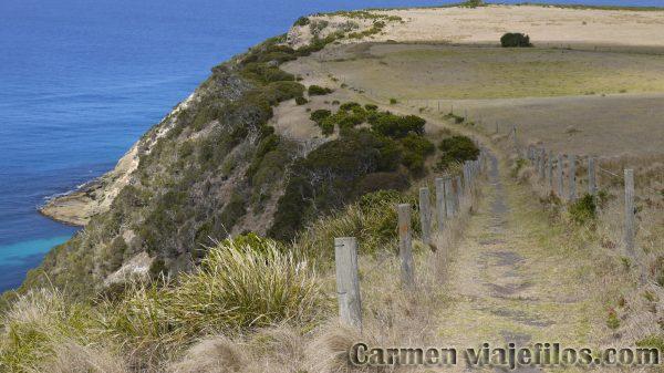 Cape Bridgewater de nuestro recorrido siguiendo la Great Ocean Road en Australia