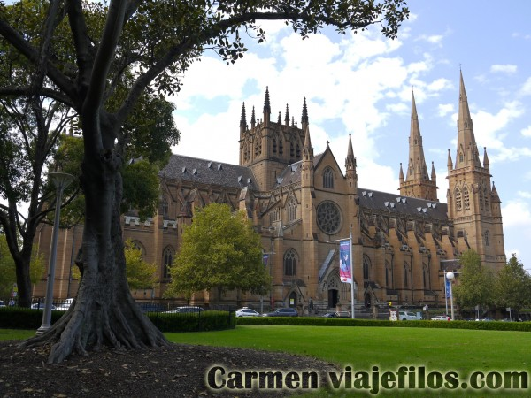 Catedral de Santa maría de Sydney